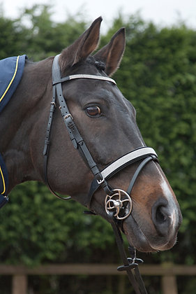 BR032 - Double Diamante Flash Bridle with Reins