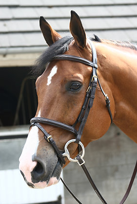 BR028 - Luxury Flash Bridle