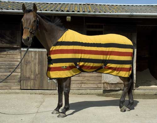 Harlequin Newmarket Stripe Fleece Rug