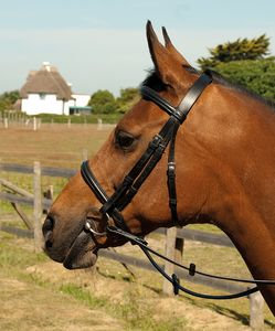 Heritage English Leather Bridle With Raised Cavess