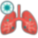 5929217 - anatomy lung medical organ.png