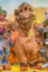 4. Shone Oz 2019 - Image 4.jpg