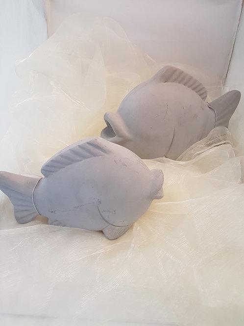Dekofisch klein