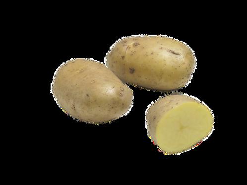 Pomme de terre allians , France, (kg)