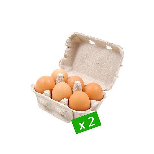 Oeuf Bio et Local, 2 boîtes x 6 = 12