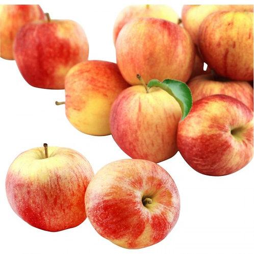 Pomme bicolore, Produit Local, (sachet 1,5 kg)