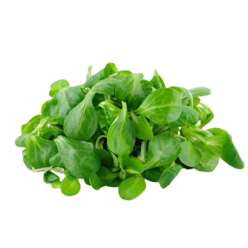 Salade mâche, France, (125g)