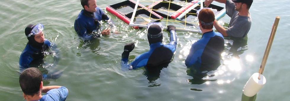 wet crew.jpg