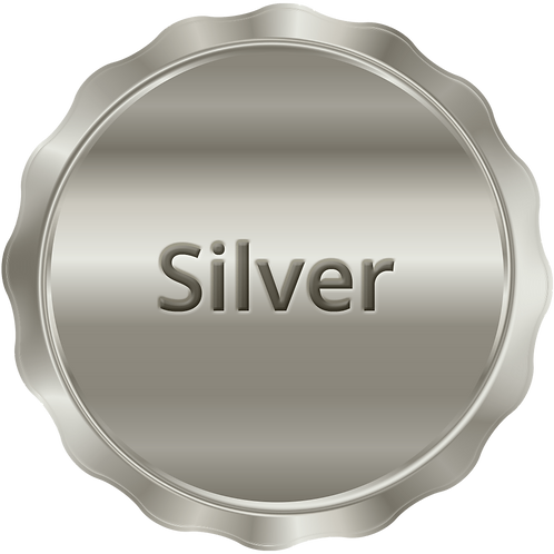 Silver Plan - per month with donation