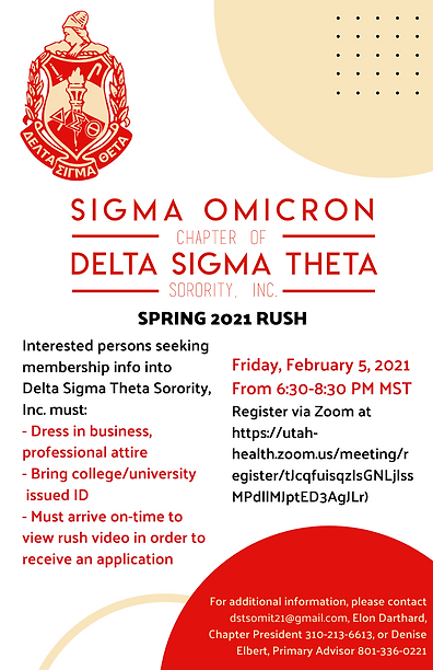 DST SO Spring 2021 Rush Flyer.png
