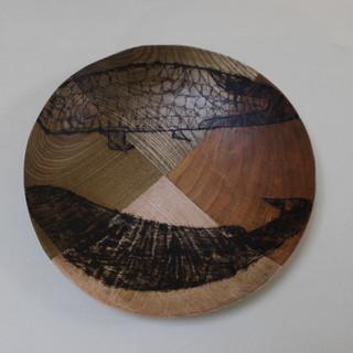 アロワナと鳥図鉢