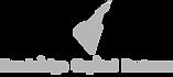 newbridge capital partners