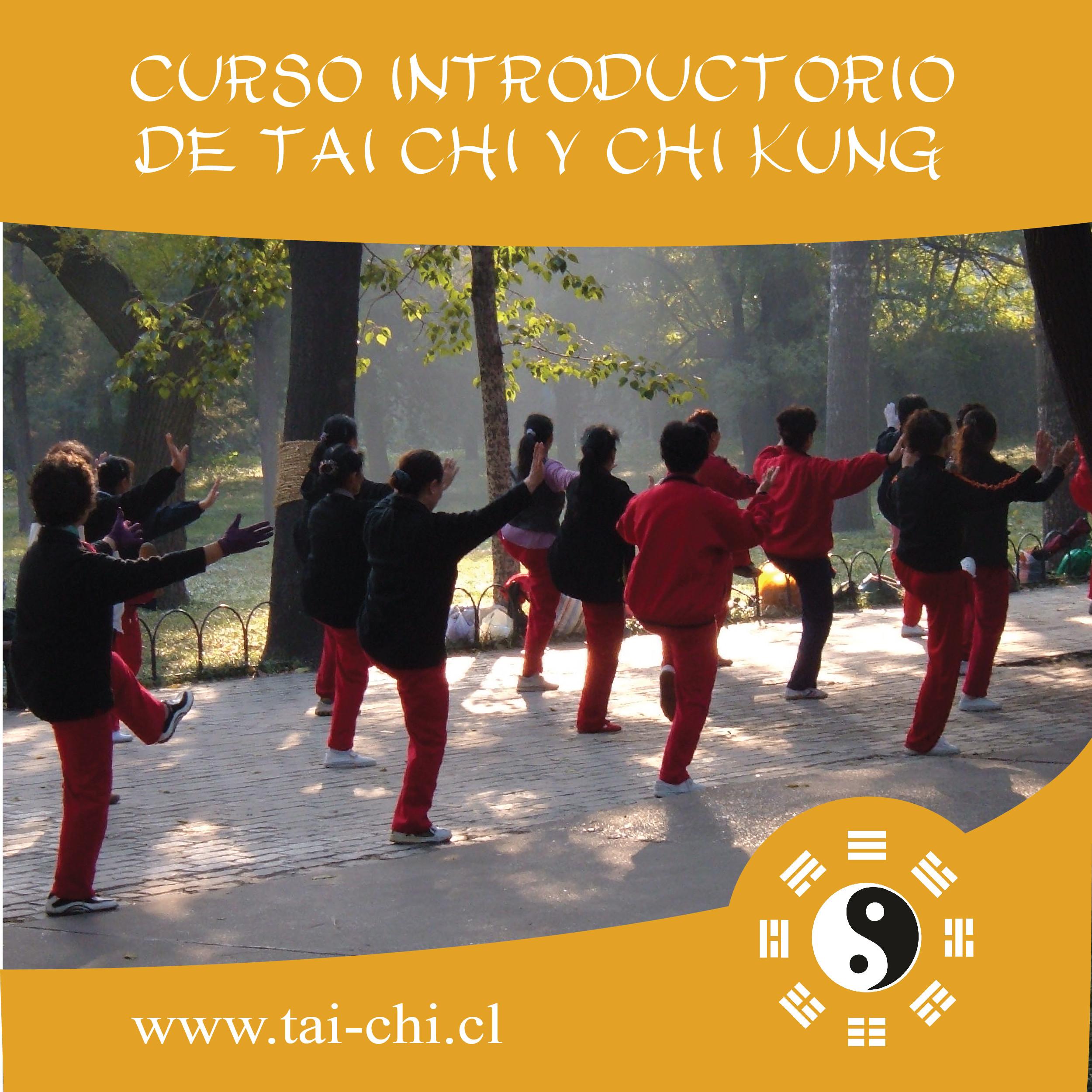 CURSO INTRODUCTORIO TAI CHI Y CHI KUNG