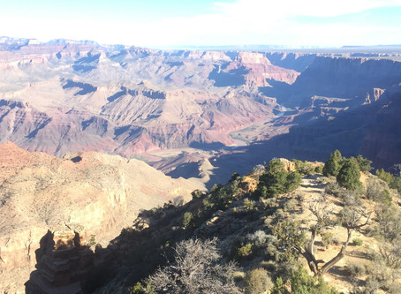 Hiking to the bottom of the Grand Canyon