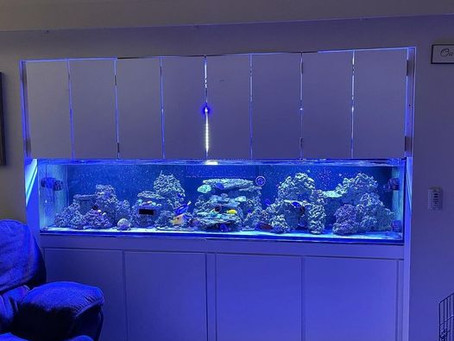 "8ft and rimless? Check out our 96"" Crystaline!"