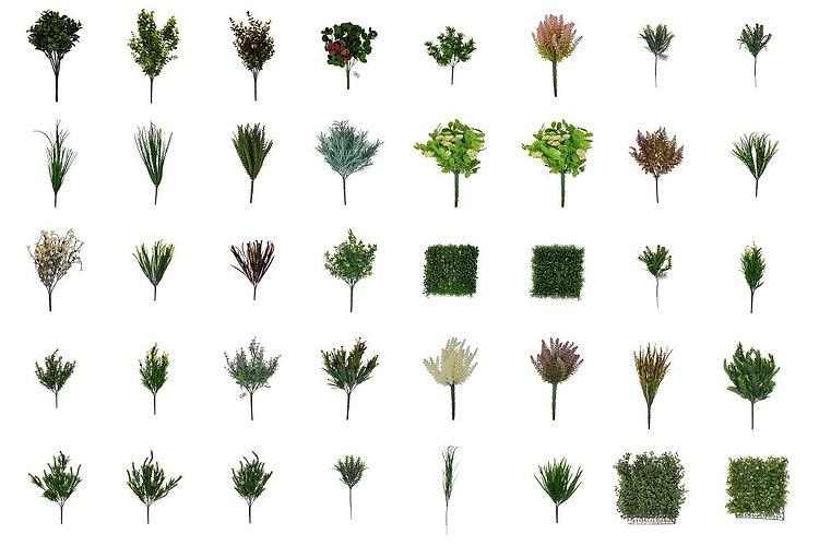 Tideline_plants_wide.jpg