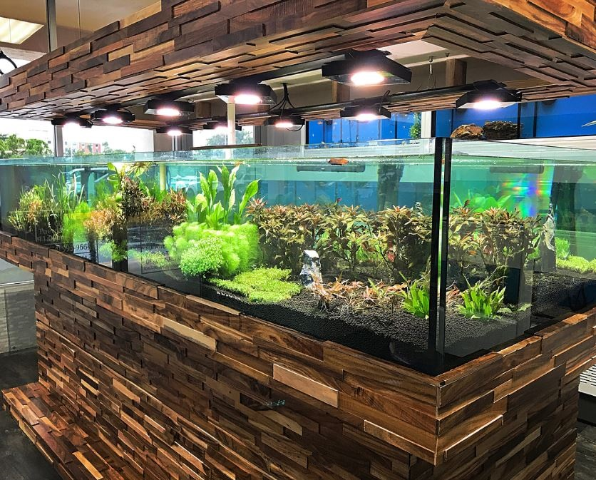 planet-custom-aquarium-10