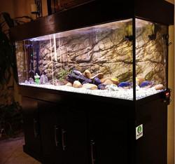 planet-custom-aquarium-05