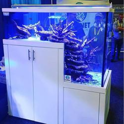 planet-custom-aquarium-06