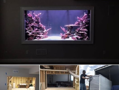 Basement fish room with a 640G!