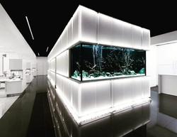 planet-custom-aquarium-03