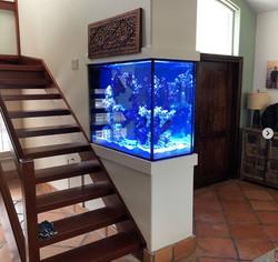 planet-custom-aquarium-02