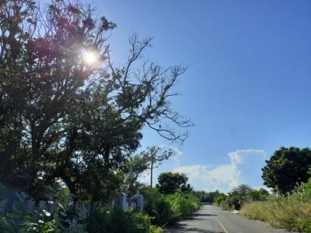 Purnam Avenue