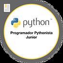 10-Programador-Pythonista-Junior.png