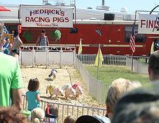 Hendricks Pig races