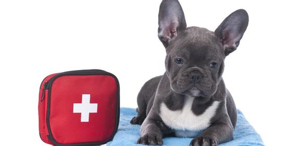 Primeros Auxilios Caninos