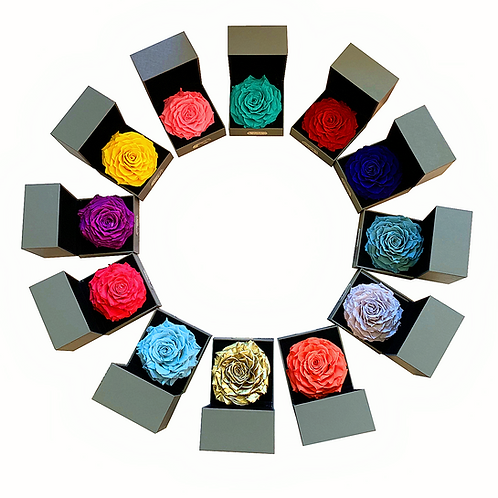 Preserved Roses Real Fresh Flower Christmas Designed Gift Box 12 Constellations