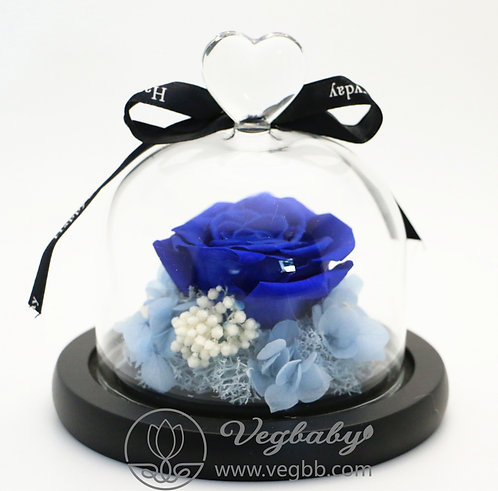 Preserved Roses Real Fresh Flower Christmas Designed Gift Box Glass Cover - Blue