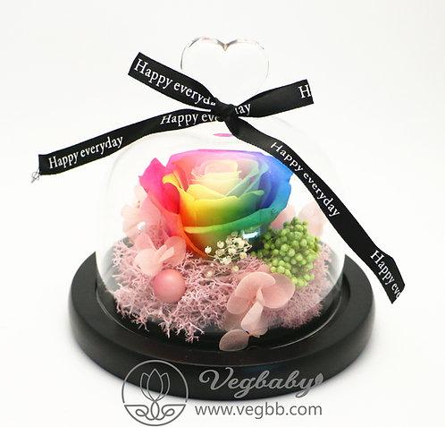 Preserved Roses Real Fresh Flower Christmas Designed Gift Box Glass - Rainbow