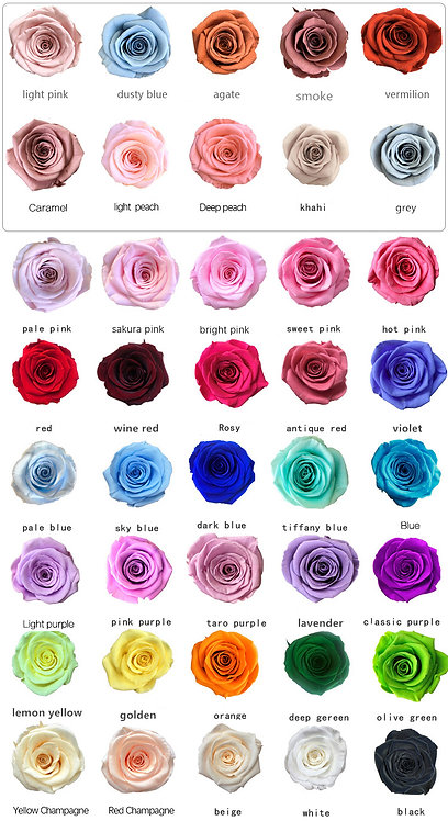 Preserved Roses Real Fresh Flower Last Forever 21 Rose 2-3cm Various Colors