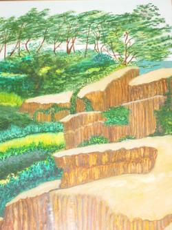 """The Torrey Pines Tree; Spirit"