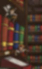 Library sprites - BACK.jpg