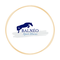 balneosporthorse.png