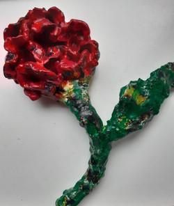 Nieuwe roos (30 cm)