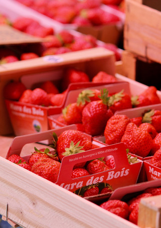 Punnets of strawberries, Provence, France