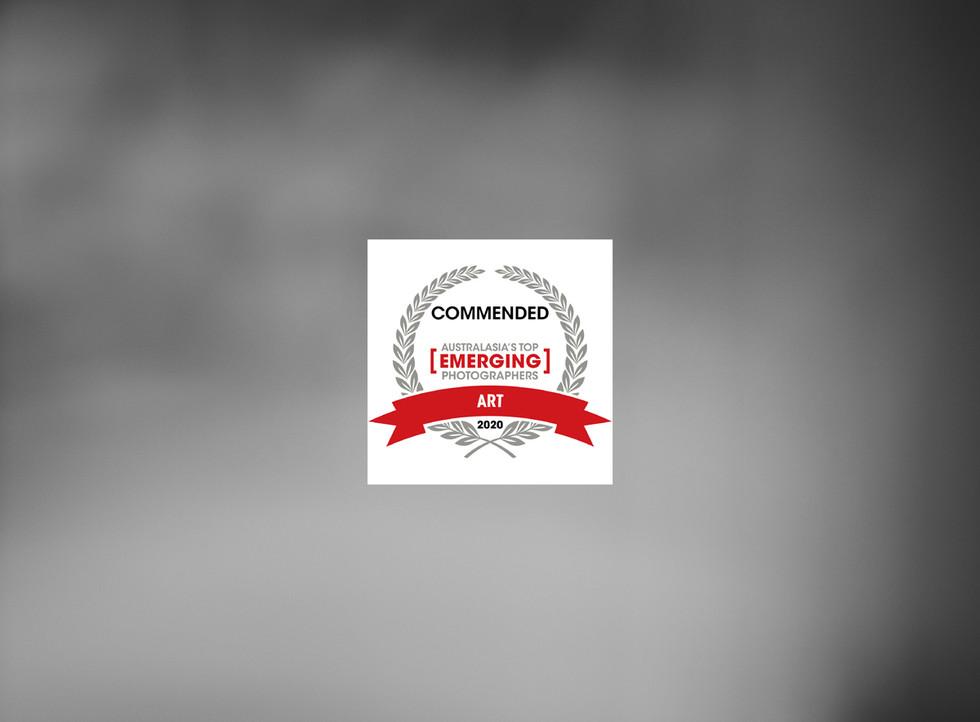 Commended - Art category - Strength (portfolio)