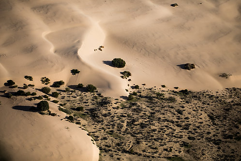 Lake Mungo 04, Aerial Photography, Landscape, Abstract