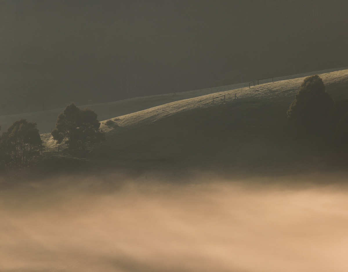 Commended - Landscape category - Trida Morning (portfolio)