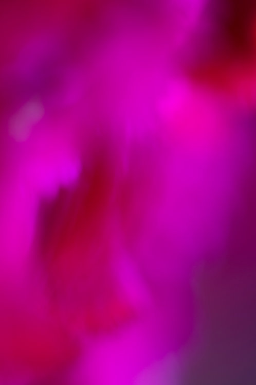 Pink, Magenta, Artwork, Photography, Abstract