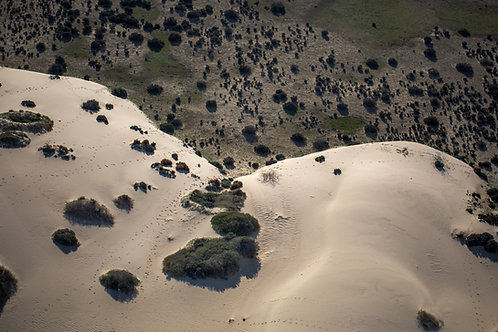 Lake Mungo 05, Aerial Photography, Landscape, Abstract