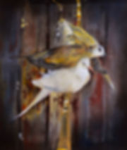 11. Doves in the Shed