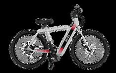 GenZe Electric Bike