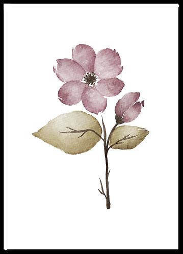 Wenskaart winterbloem paars