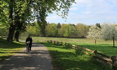 fietsen_edited.jpg