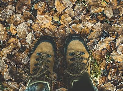 shoes-1940249_1920.jpg