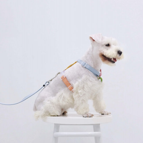 RAINBOW  HARNESS  FOR  DOG&CAT